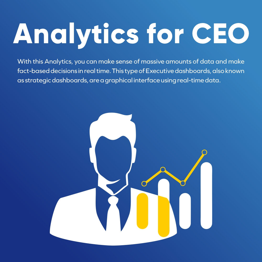 Analytics for CEO